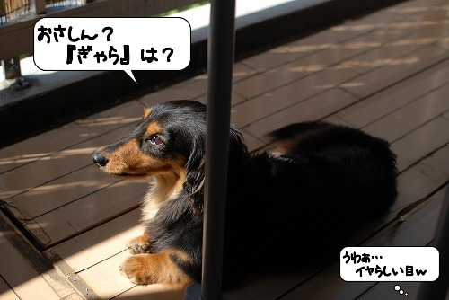 20110701_135220[1]