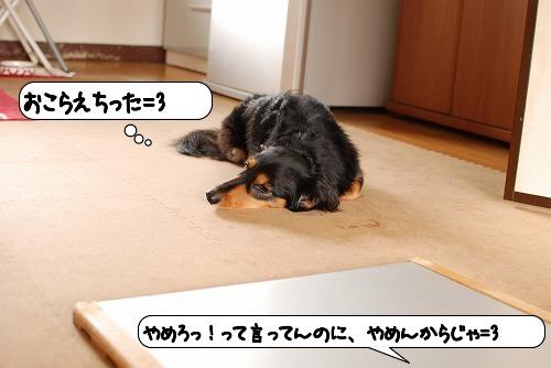 20110707_093911[1]
