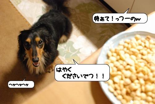20110713_113631.jpg