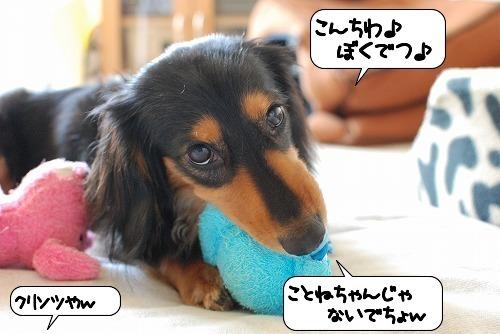 20110716_115638.jpg