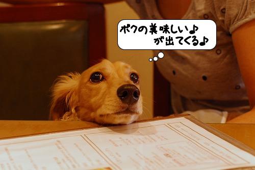 20110719_113418.jpg