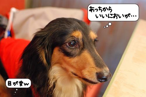 20110719_113641.jpg