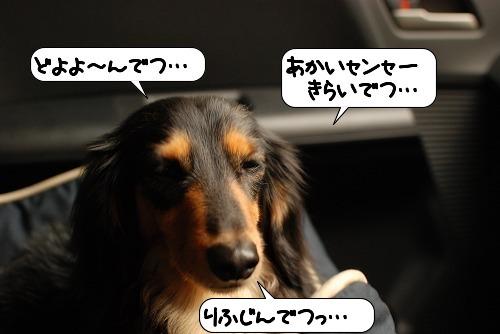 20110721_101844.jpg