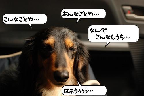 20110721_102105.jpg