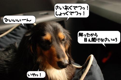20110721_102401.jpg