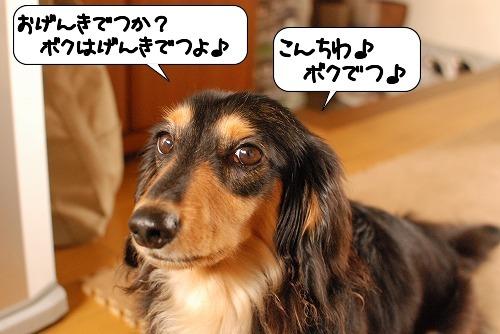 20110729_103520.jpg