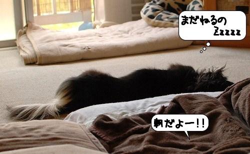 20110805_141332.jpg