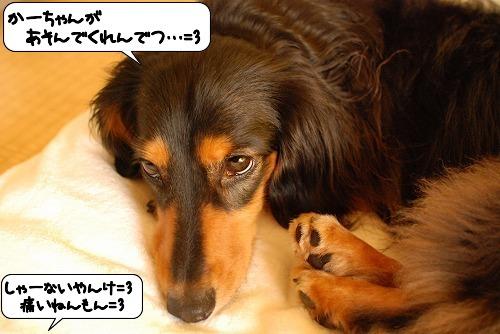 20110810_145049.jpg
