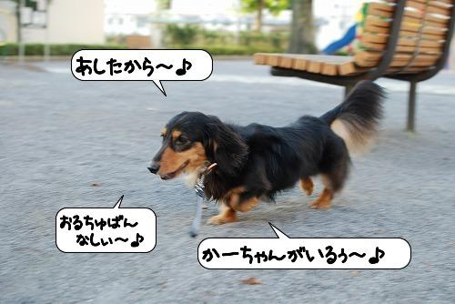 20110812_133455.jpg