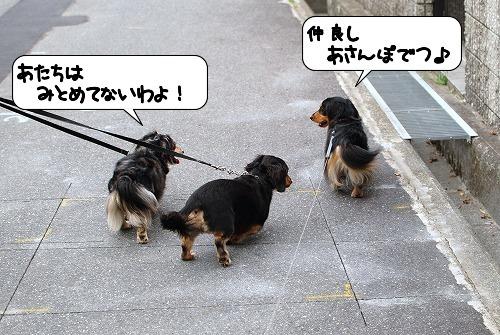 20110817_091236.jpg