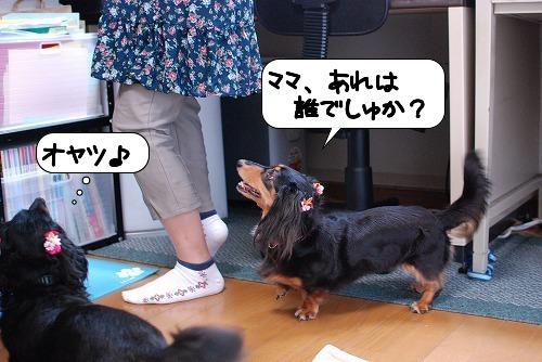 20110818_112024.jpg