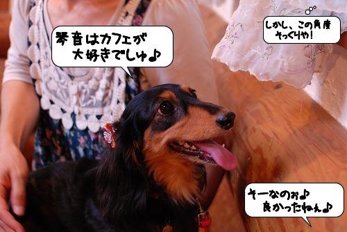 20110819_132941.jpg