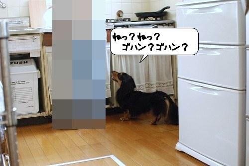 20110822_135130.jpg