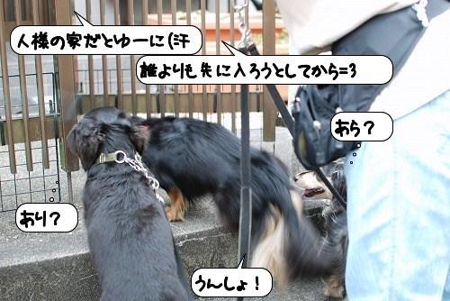 20110822_135844.jpg