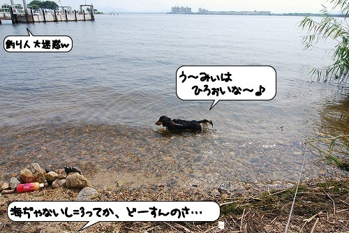 20110823_103645.jpg