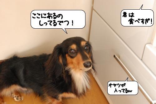 20110827_132059.jpg