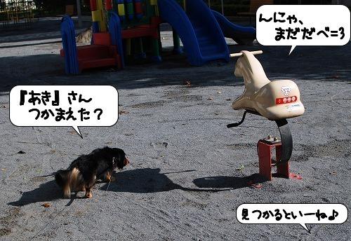 20110829_131649.jpg