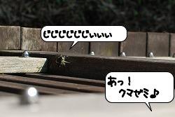 20110829_132008.jpg