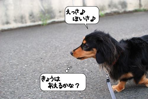 20110907_131825.jpg