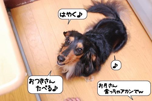 20110913_104945.jpg