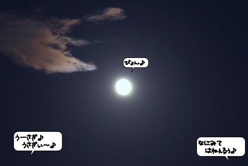 20110913_105740.jpg