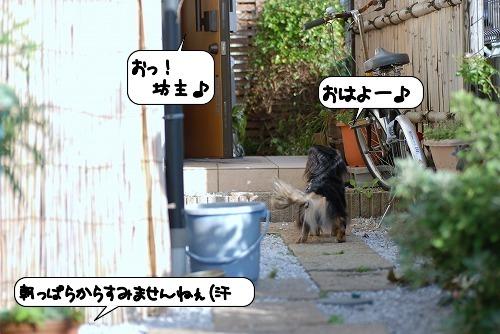 20110914_131704.jpg