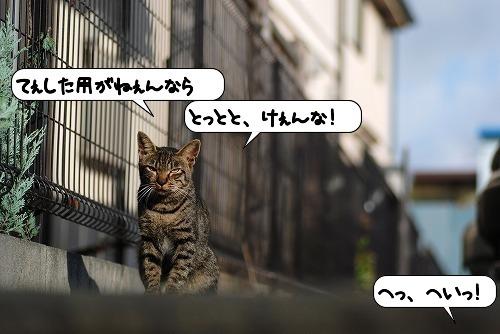 20110914_132224.jpg
