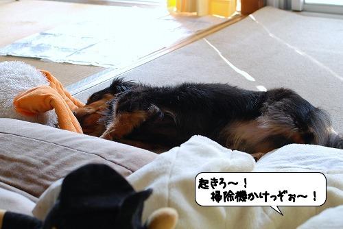20110922_130107.jpg