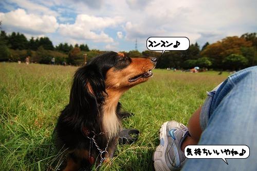 20110927_103441.jpg