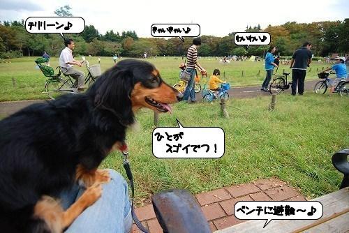 20110927_103950.jpg