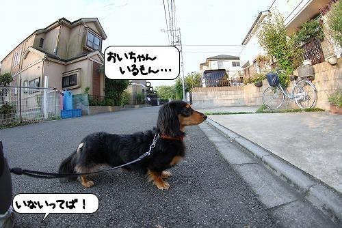 20110930_113916.jpg