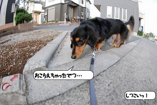 20110930_114340.jpg