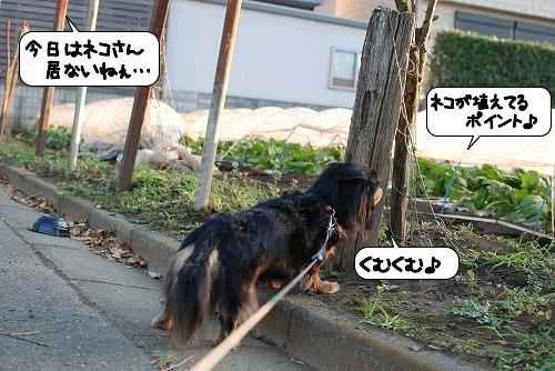 20111004_132052.jpg