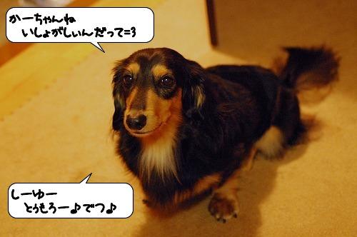20111006_132138.jpg