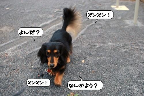 20111008_134741.jpg