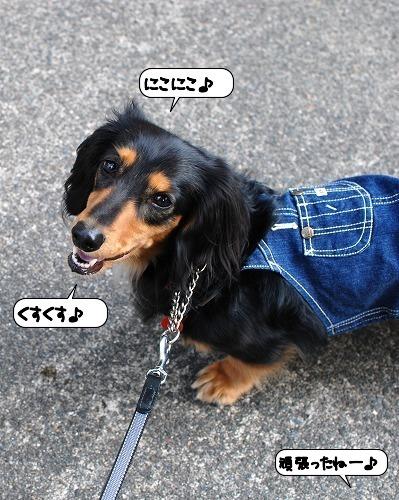 20111011_114901.jpg