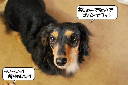 20111013_112943.jpg