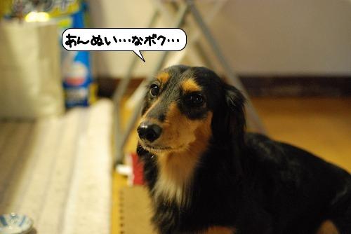 20111015_133758.jpg