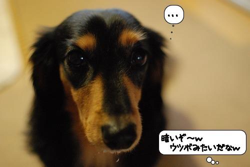 20111015_134011.jpg
