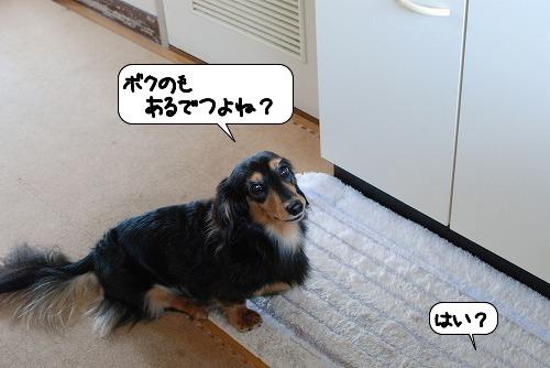 20111017_132407.jpg