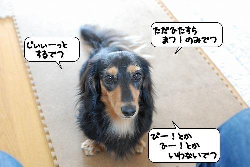 20111017_132853.jpg