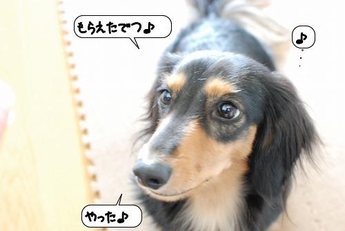 20111017_133009.jpg