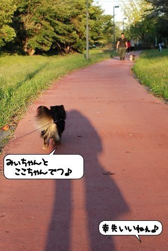 20111018_134026.jpg
