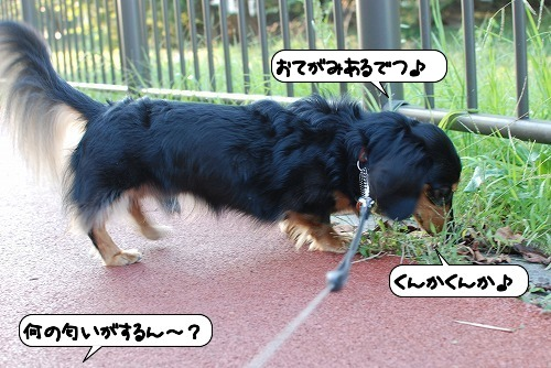 20111018_134231.jpg