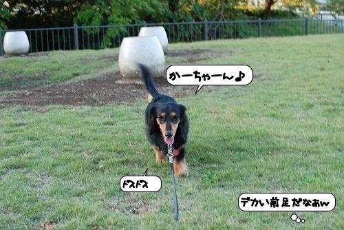 20111018_135450.jpg