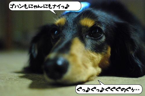20111019_112457.jpg