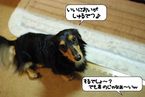20111021_085158.jpg