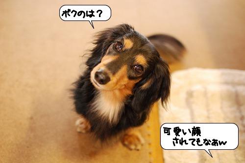 20111021_090101.jpg