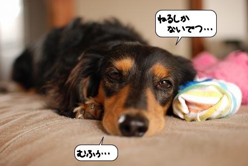 20111021_091356.jpg