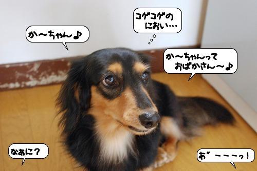 20111024_110507.jpg